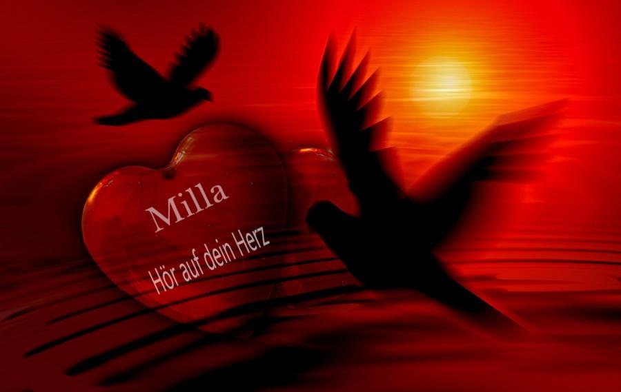 hor-auf-dein-herz-milla