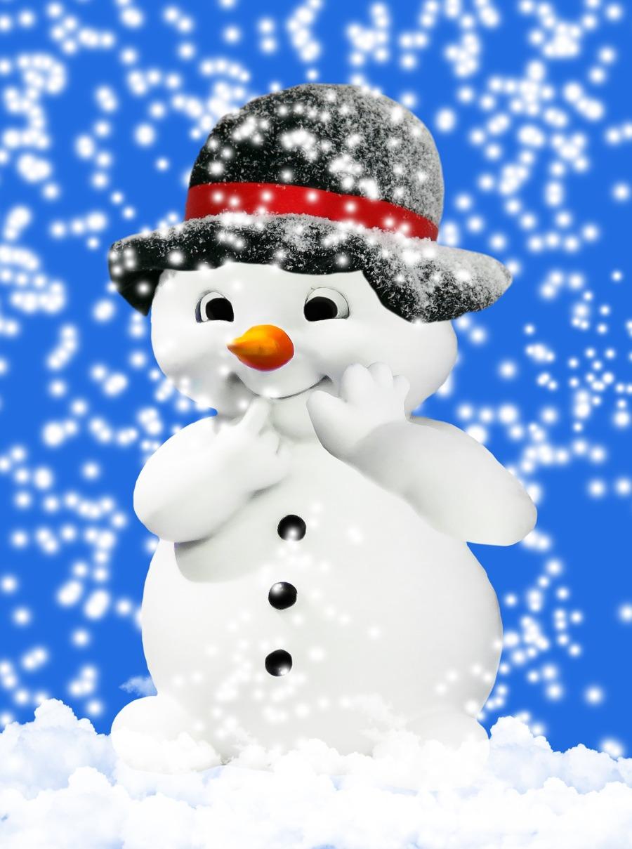 winter-1844476_1920